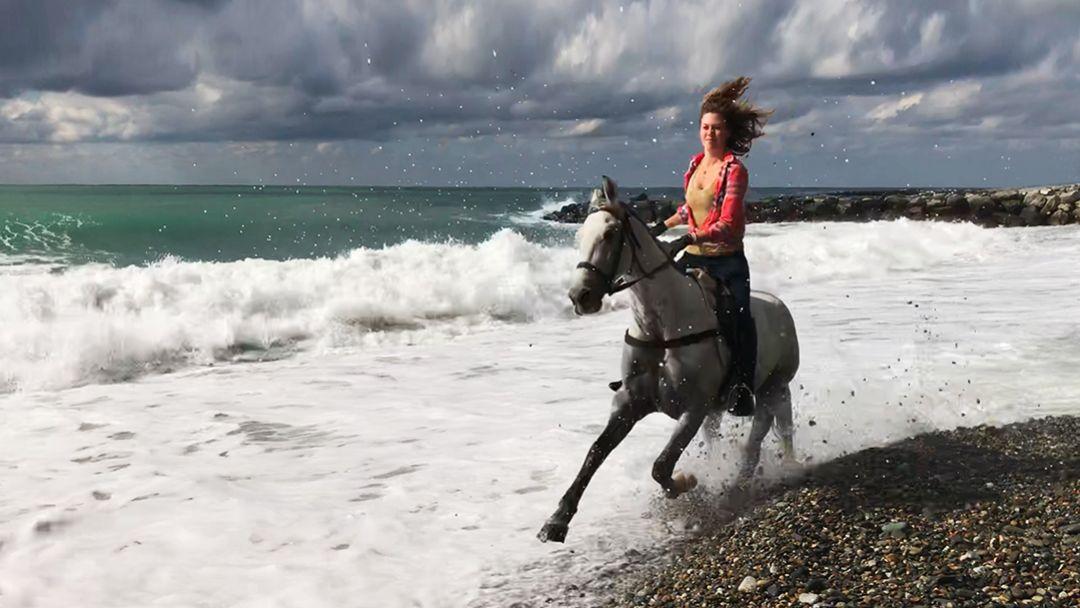 На лошадях к Черному морю в Адлере