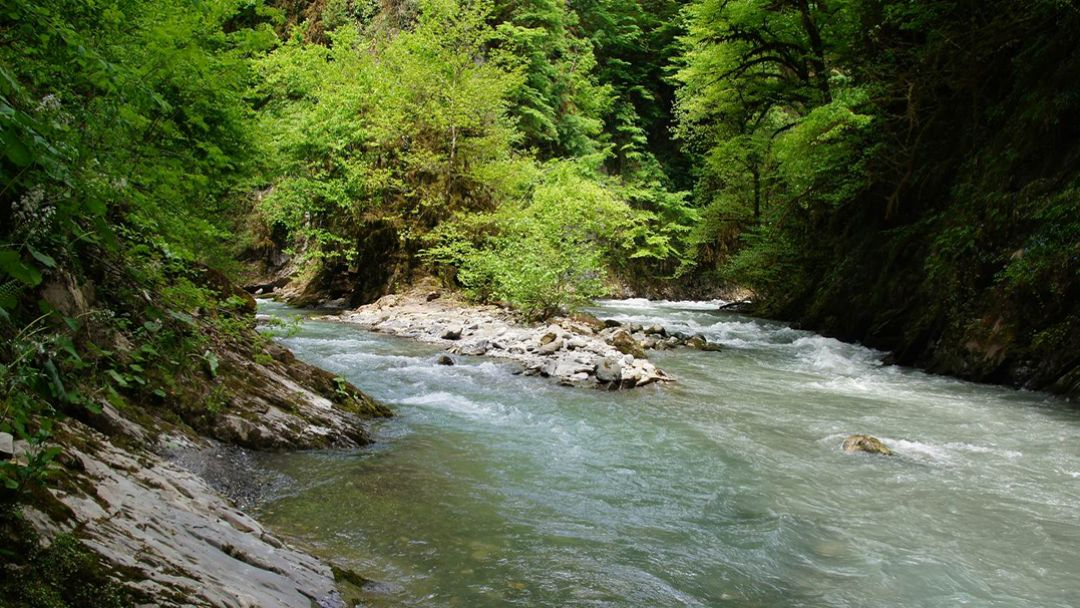 По реке Сочи - фото 2