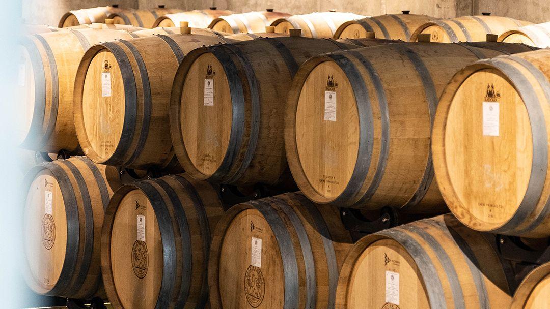 Дегустация премиальных вин Золотой Балки - фото 3