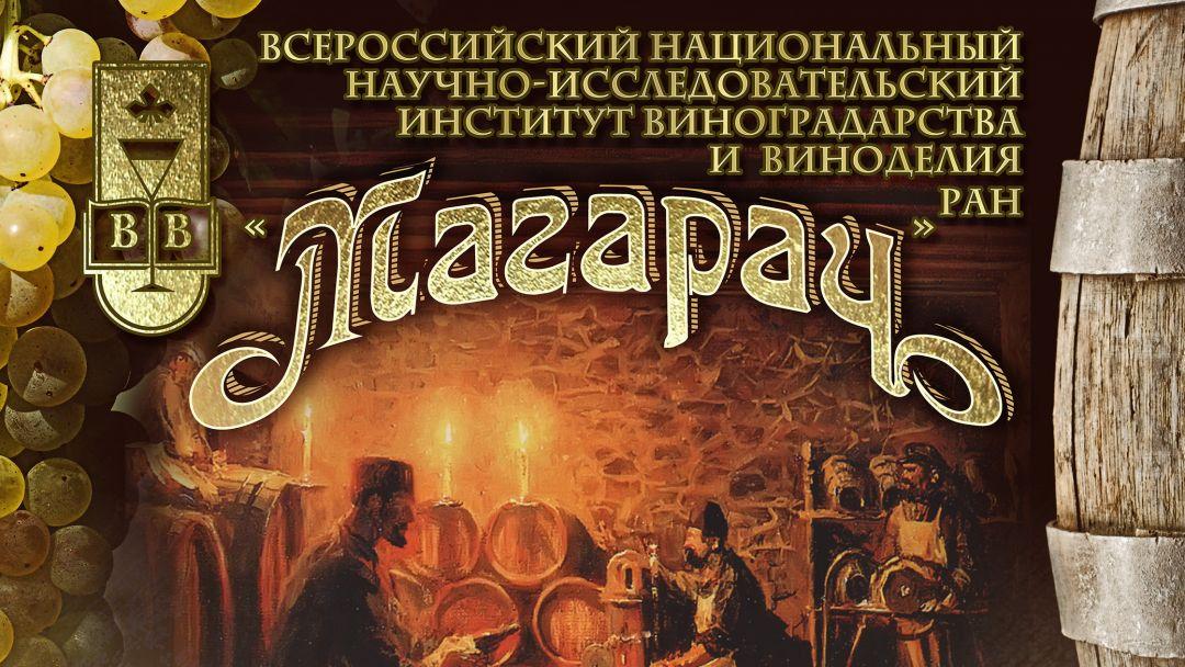 Экскурсия и Дегустация Крымских вин  - фото 4