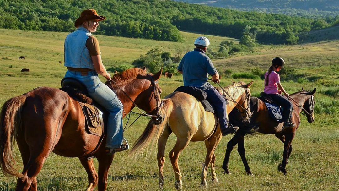 Конные прогулки в Геленджике, п. Возрождение - фото 1
