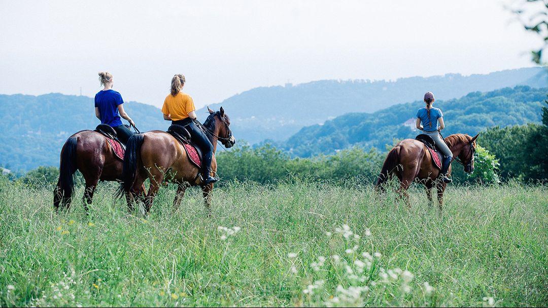 Конные прогулки в Геленджике, п. Возрождение - фото 2