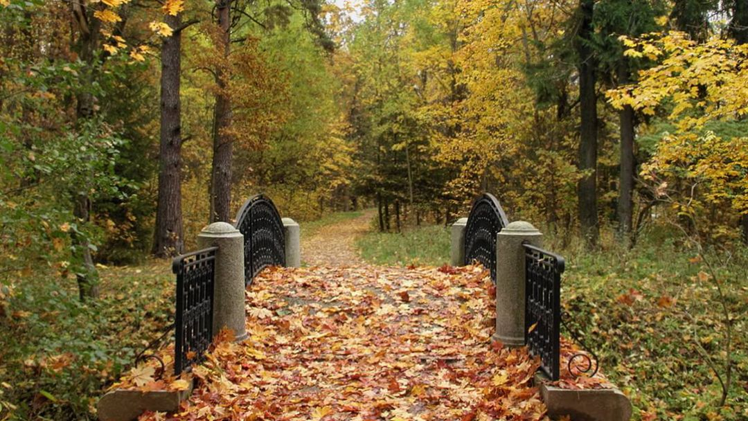Тихие парки - фото 3