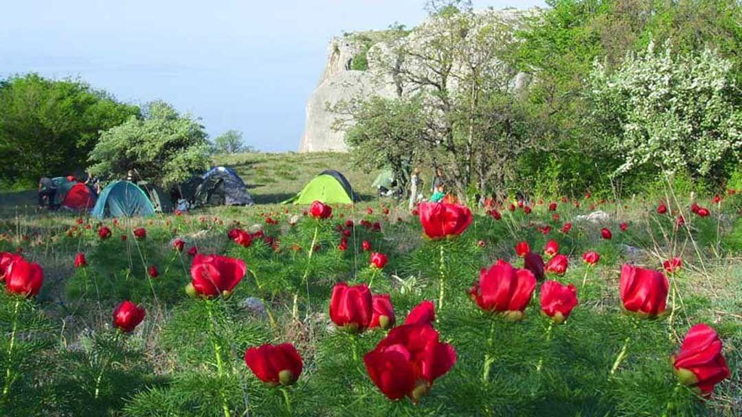 Поход по Крыму на майские праздники «Пробуждение силы», тур на 10 дней - фото 1