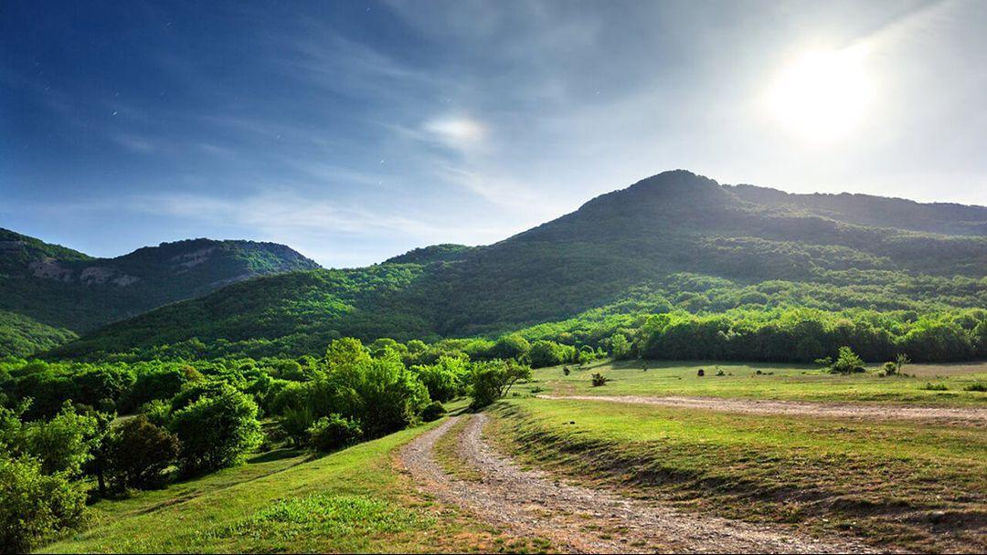 Долин приютная краса - фото 1