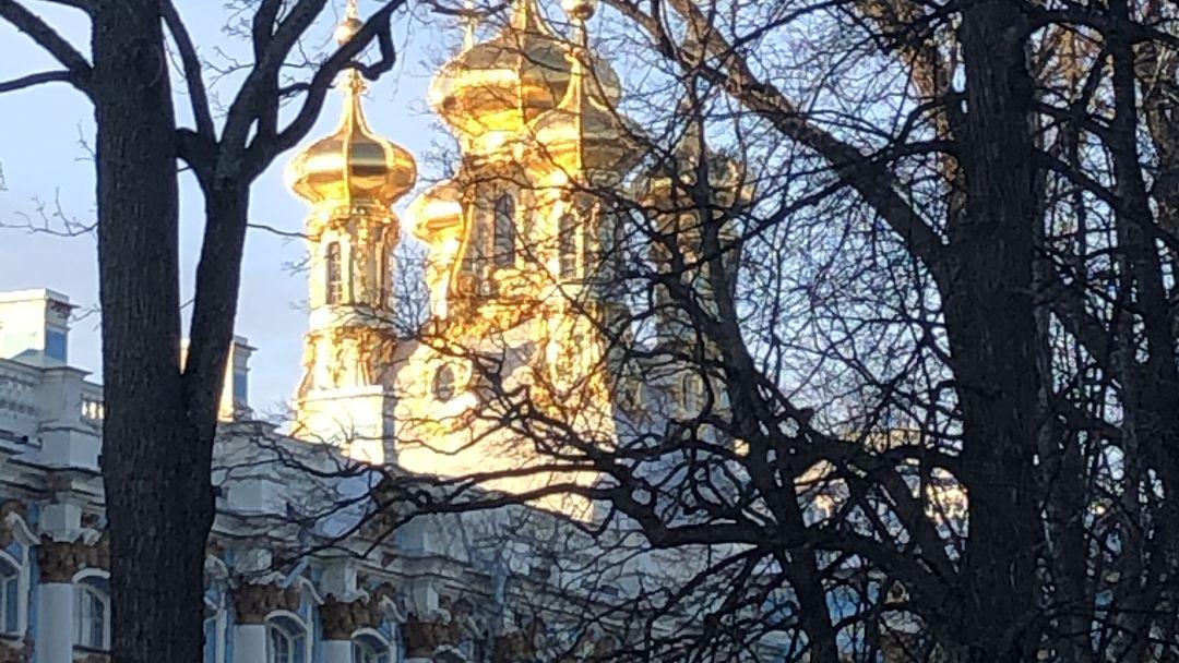 Пушкин (Екатерининский парк, Дворец и Янтарная комната) - фото 2