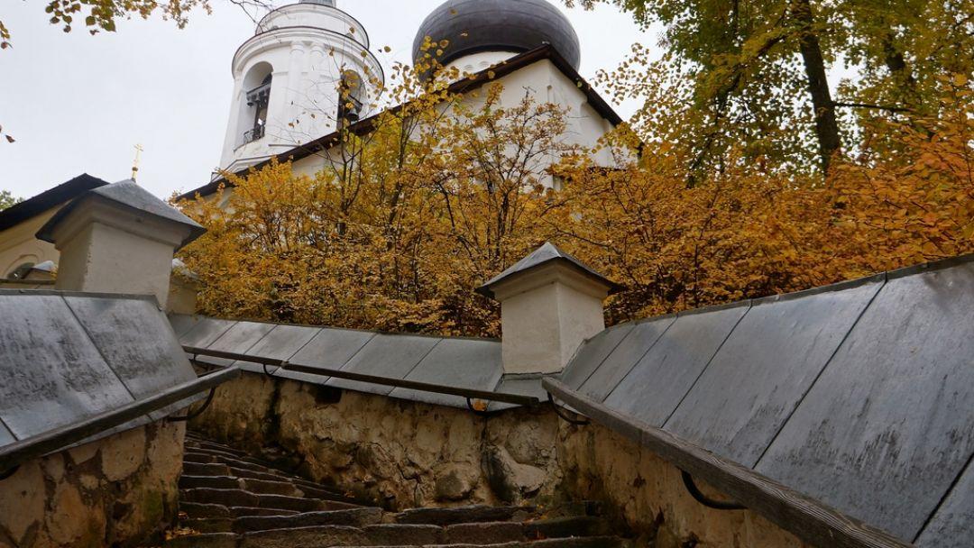 ПУШКИНСКИЕ  ГОРЫ ( Михайловское, Тригорское, Святогорский монастырь) - фото 5