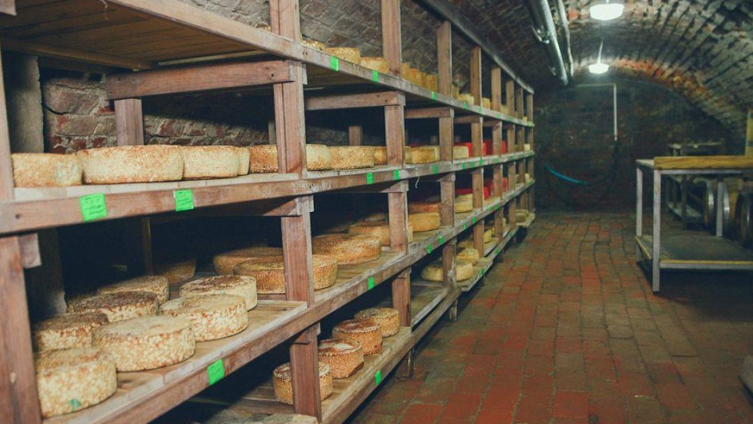 «Лабиау и Рагнит: город пива, город сыра» - фото 3