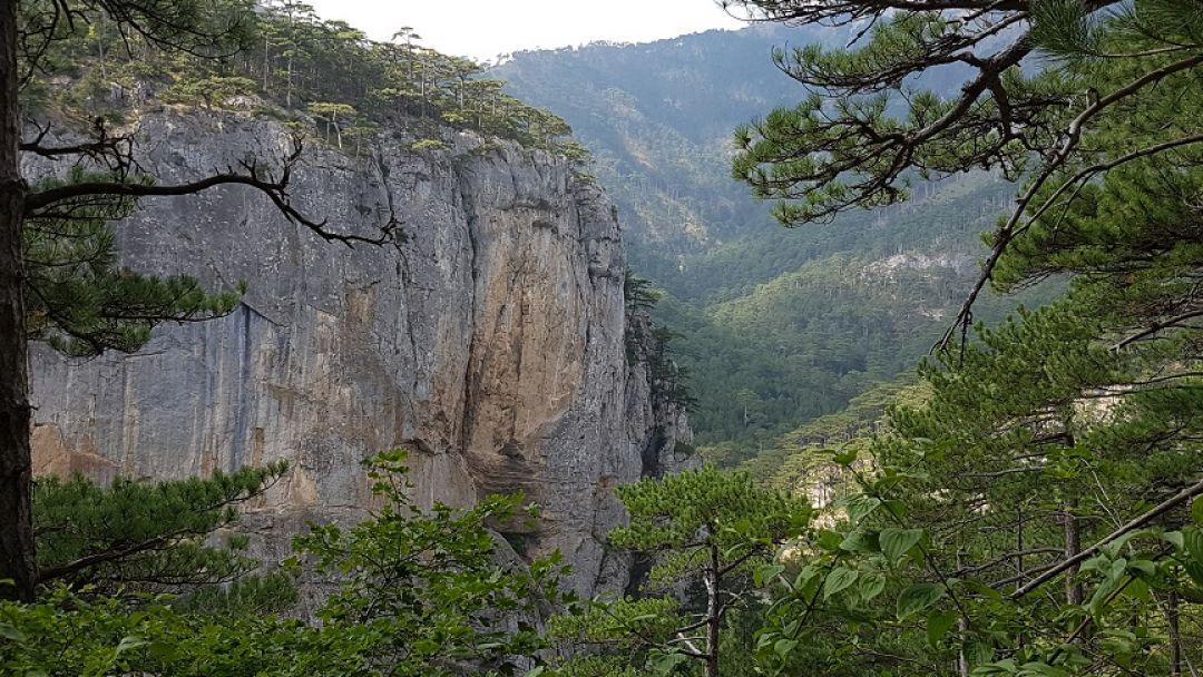 Пещеры Крыма  в Ялте
