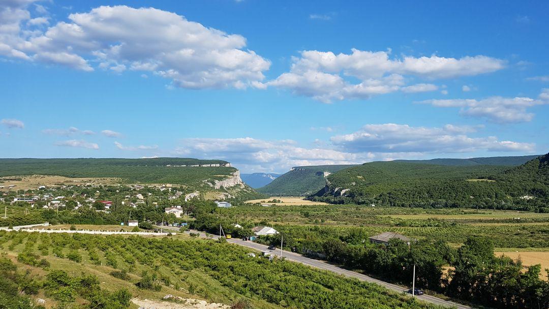 Ода виноградной лозе - фото 5