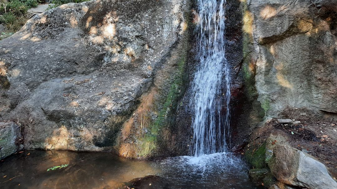 Алупка-Ялта-теплоход - фото 3
