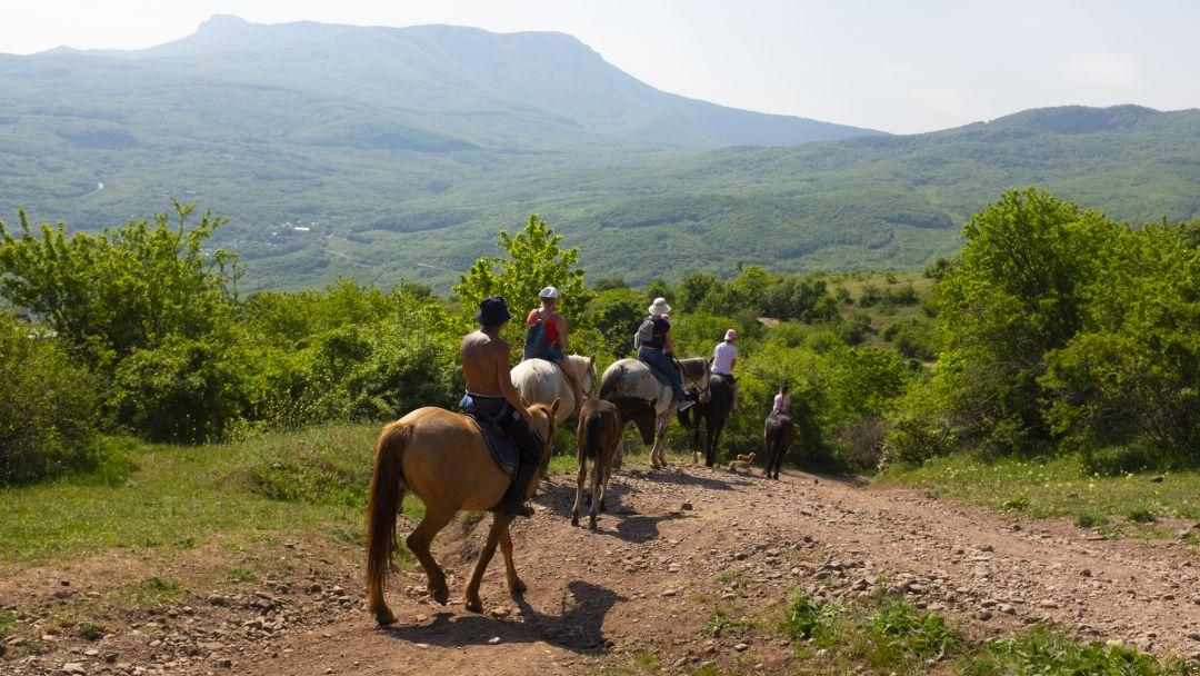 Конные прогулки в окрестностях Ялты в Ялте