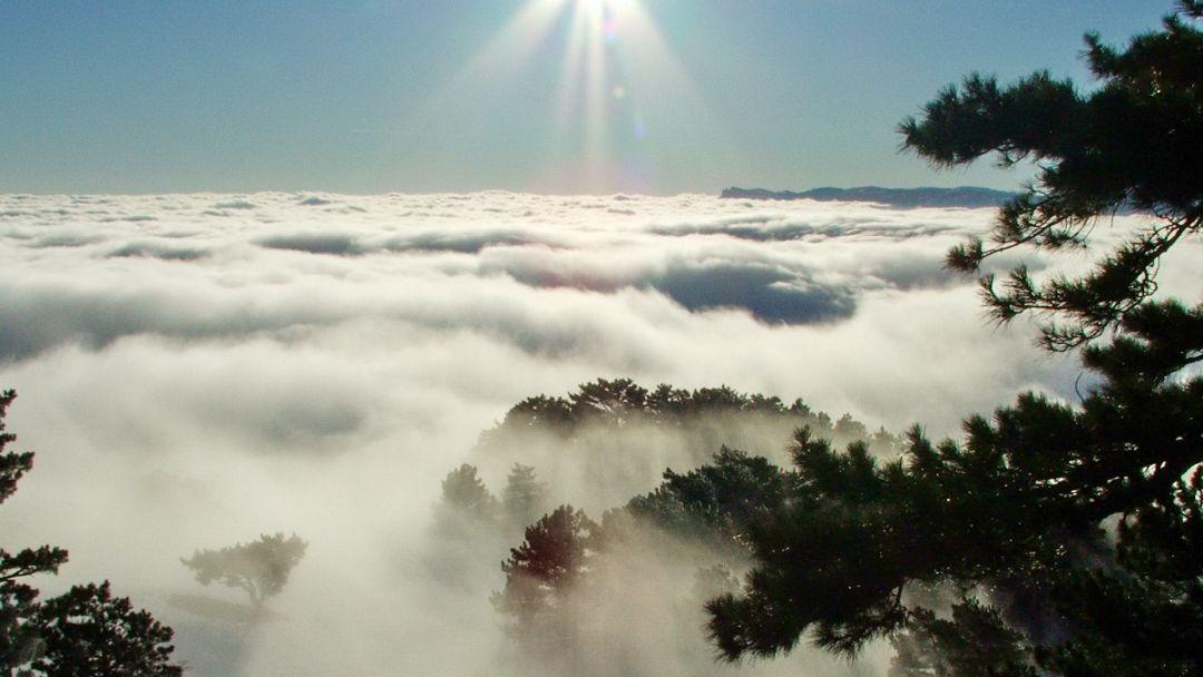 Восхождение на Ай-Петри, 1234 метра над морем! - фото 4