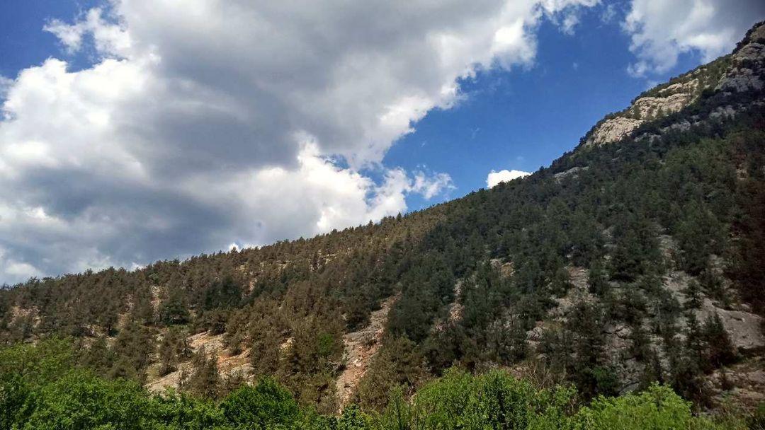 Изумрудный каньон Черной реки - фото 3