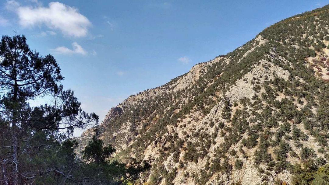 Изумрудный каньон Черной реки - фото 9