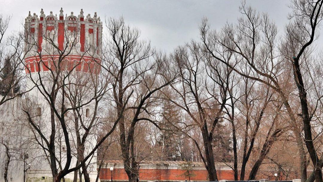 Древняя обитель: Новодевичий монастырь и некрополь - фото 3