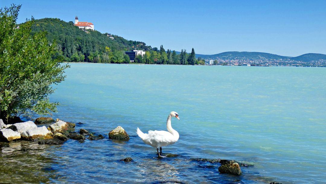 Красоты озера Балатон и мануфактура Херенд - фото 3