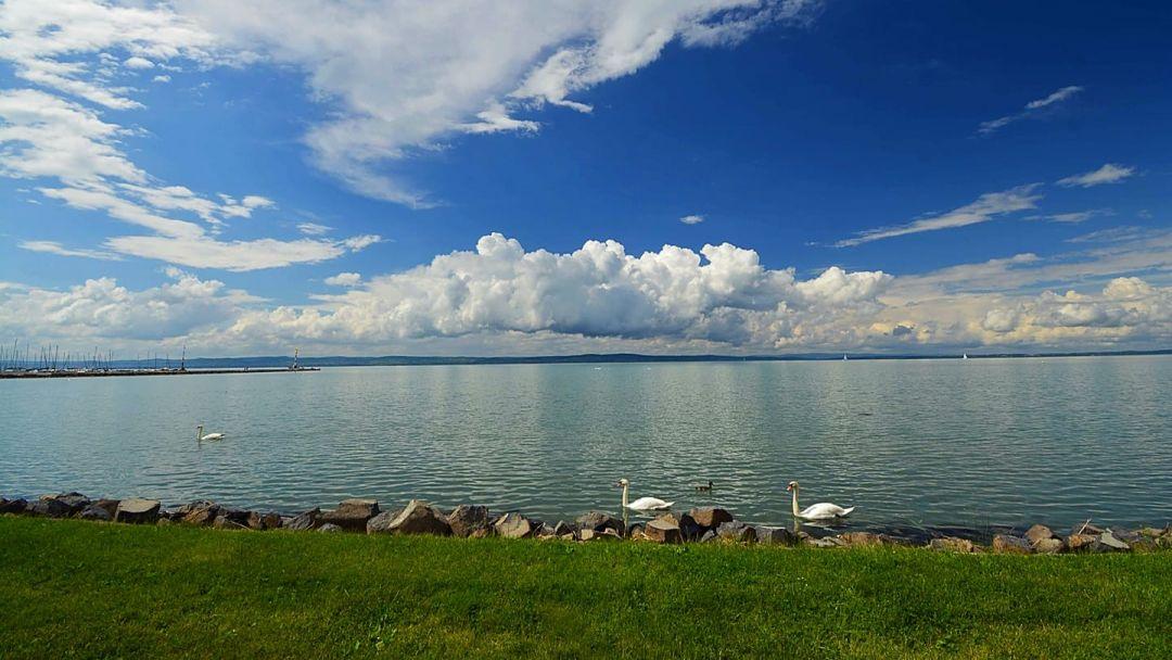 Красоты озера Балатон и мануфактура Херенд - фото 6