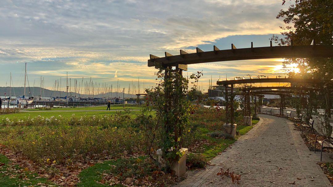 Красоты озера Балатон и мануфактура Херенд - фото 8