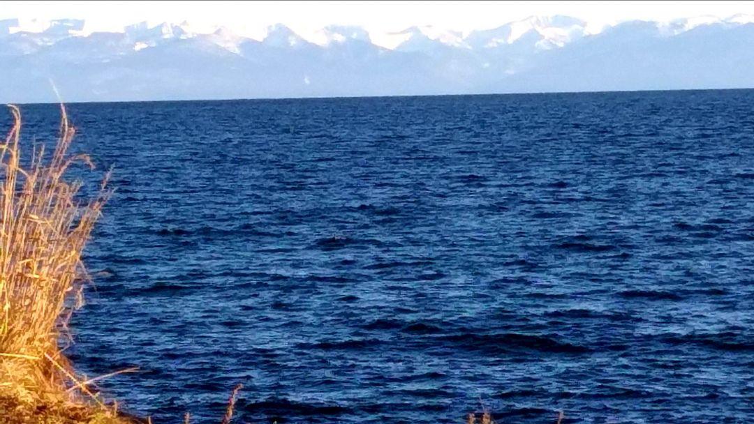 На Байкал за один день недорого - фото 3