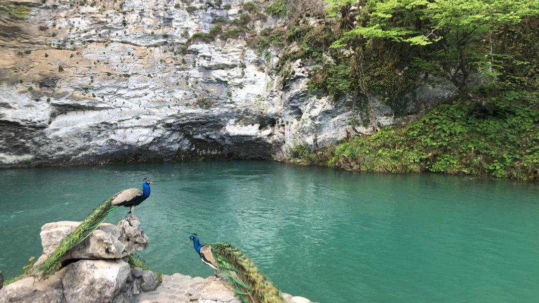 Джип-тур в Абхазию с купанием в море. Другой уровень. - фото 8