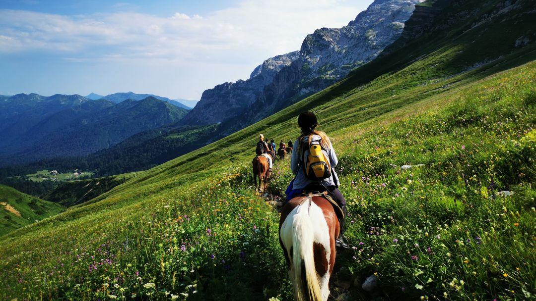 Конные прогулки, маршрут: Чернореченский каньон в Учкуевке