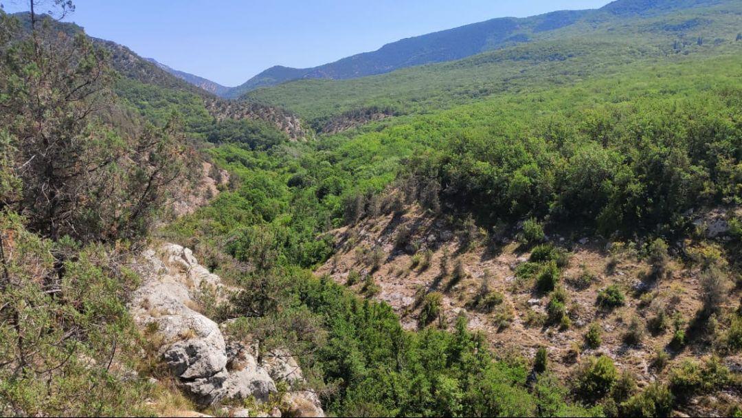 Конные прогулки, маршрут: Чернореченский каньон - фото 3