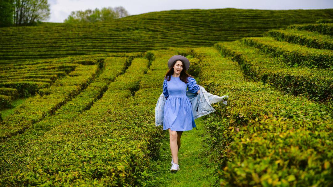 Фототур к чайной плантации