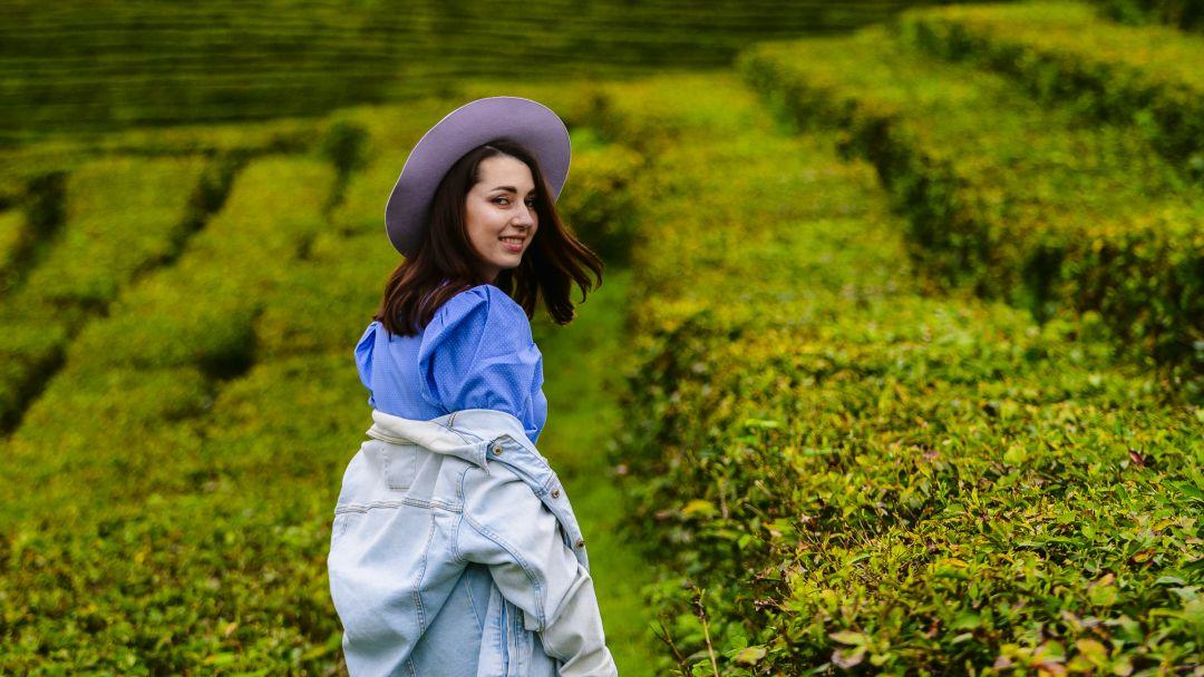 Фототур к чайной плантации - фото 5