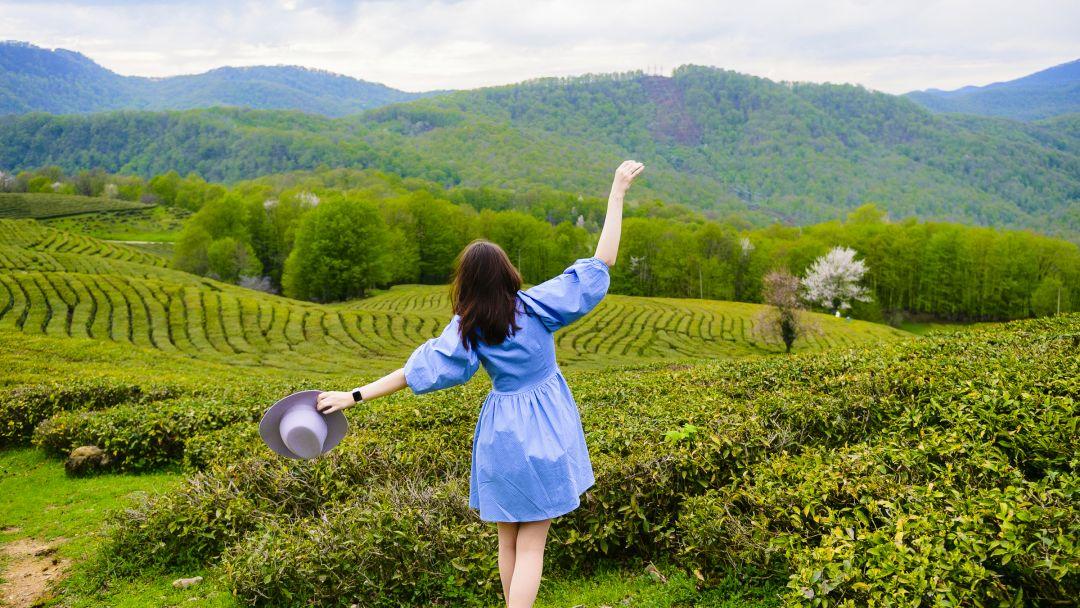 Фототур к чайной плантации - фото 6