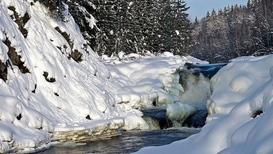 Экскурсия к целебным источникам «Марциальные воды» и заповеднику «Кивач» - фото 5