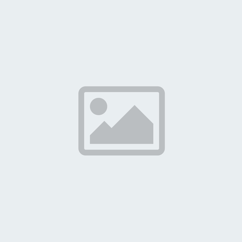 Экскурсия «Встреча гостей в Горном Алтае»
